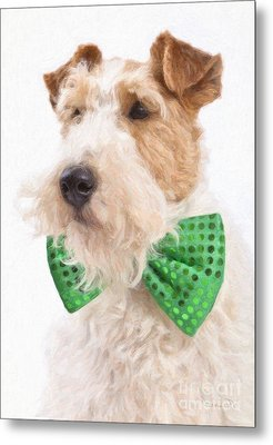 Wire Fox Terrier With Bowtie Metal Print