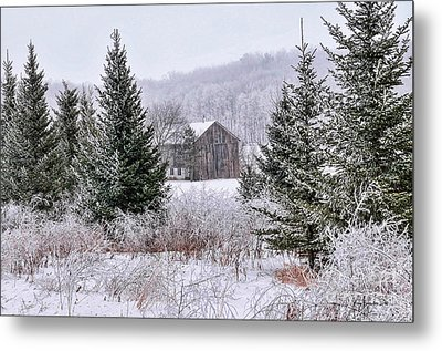 Wisconsin Frost Metal Print by Trey Foerster