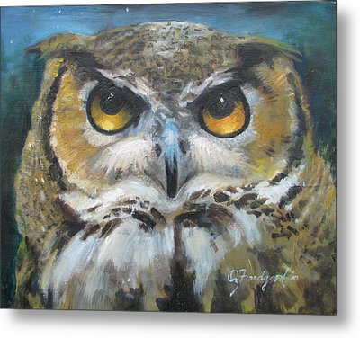 Wise Old Owl Eyes  Metal Print