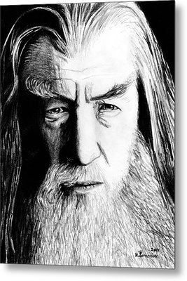 Wise Wizard Metal Print