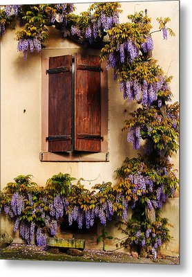 Wisteria Encircling Shutters In Riquewihr France Metal Print by Greg Matchick