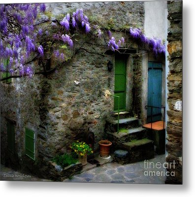 Wisteria On Stone House Metal Print by Lainie Wrightson