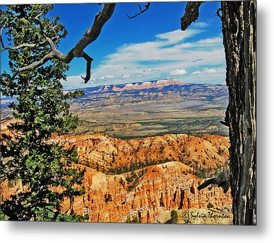 With God's Paintbrush Metal Print by Sylvia Thornton