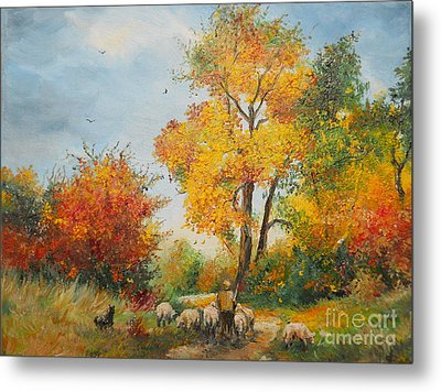 With Sheep On Pasture  Metal Print by Sorin Apostolescu