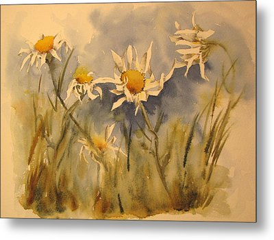 Withering Daisy's Metal Print by Ramona Kraemer-Dobson