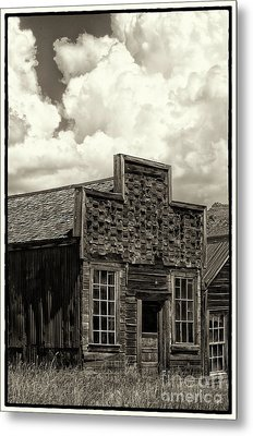 Withstanding The Years Metal Print by Sandra Bronstein