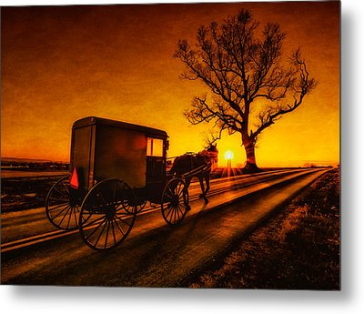 Witness Metal Print by Linda Karlin