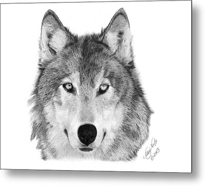 Metal Print featuring the drawing Wolf - 004 by Abbey Noelle
