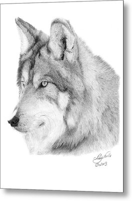 Metal Print featuring the drawing Wolf - 006 by Abbey Noelle