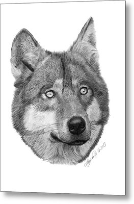 Metal Print featuring the drawing Wolf - 017 by Abbey Noelle