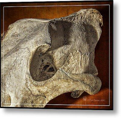 Wolf Bone Metal Print