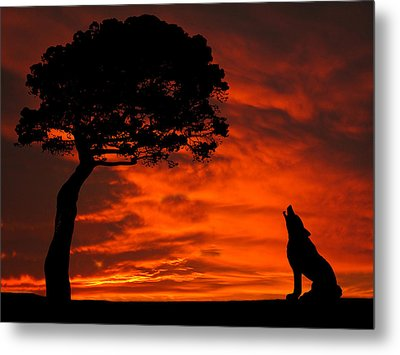 Wolf Calling For Mate Sunset Silhouette Series Metal Print