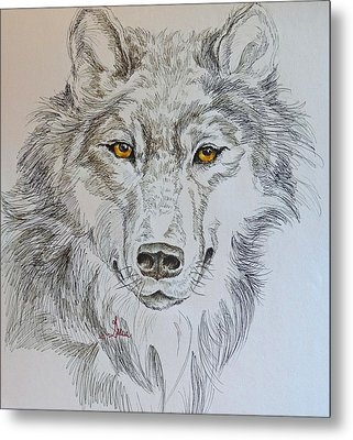 Wolf Eyes  Metal Print by Gracia  Molloy