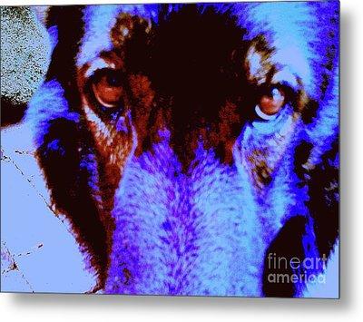 Wolf Eyes Metal Print by Nina Kaye
