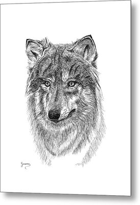Wolf II Metal Print by Carl Genovese