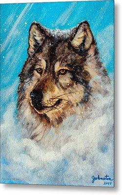 Wolf In A Snow Storm Metal Print by Bob and Nadine Johnston