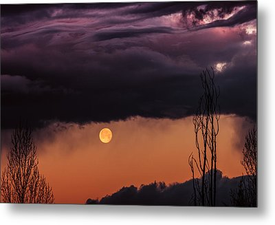 Wolf Moon Metal Print by Roger Chenery