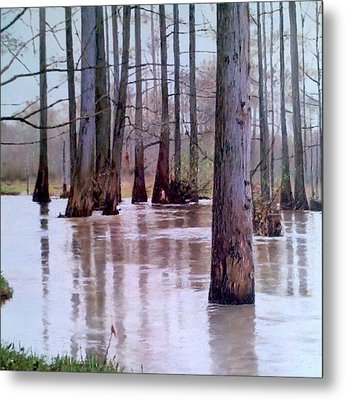 Wolf River Near Moscow Tennessee Metal Print