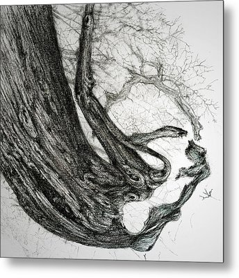 Metal Print featuring the drawing Woman by Penny Collins