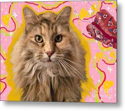 Wonder Kitty Metal Print