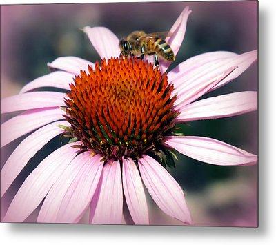 Wonder Of Pollen Metal Print by Karen Wiles