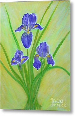Wonderful Iris Flowers. Inspirations Collection. Metal Print