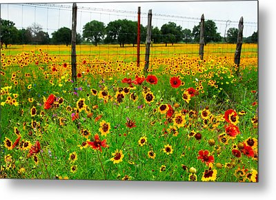 Wonderful Wildflowers Metal Print