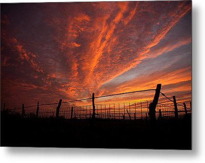 Wonderous Sky Metal Print by Shirley Heier