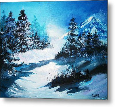 Wonders Of Winter Metal Print