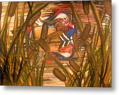 Wood Duck At Peace Metal Print