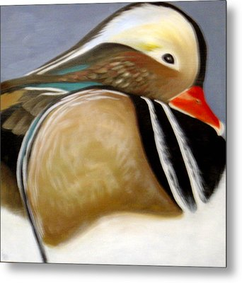 Wood Duck  Metal Print by Nicoletta Filarski
