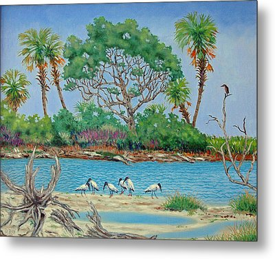 Wood Stork Beach Party Metal Print by Dwain Ray
