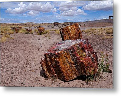 Wood To Stone Metal Print by Gene Sherrill
