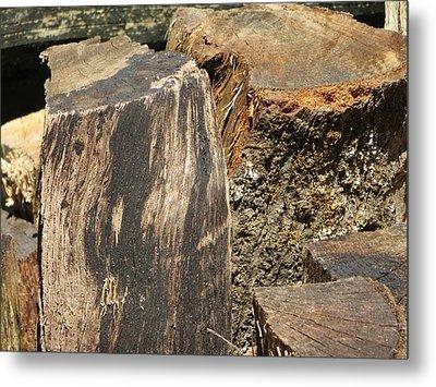 Wood You Metal Print by Tim Townsend