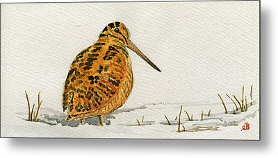 Woodcock Bird Metal Print by Juan  Bosco