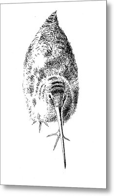 Woodcock Metal Print by Tatiana Makeeva