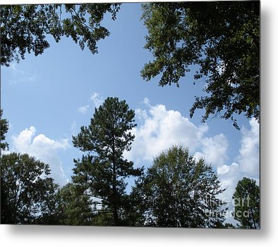 Wooded Forest  Metal Print by Joseph Baril