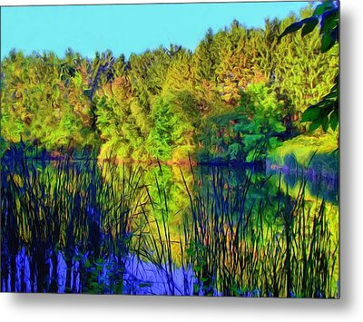 Metal Print featuring the digital art Wooded Shore Through Reeds by Dennis Lundell