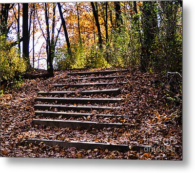 Wooded Stairs Metal Print
