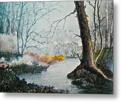 Wooded Stream Metal Print by Carolyn Rosenberger