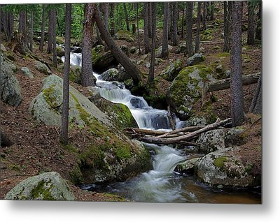 Wooded Stream Metal Print by Matt Helm