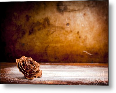 Wooden Rose Background Metal Print by Tim Hester