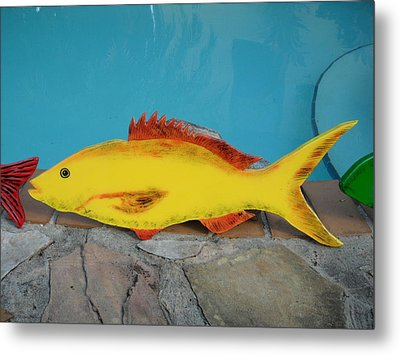 Wooden Yellow Tail Metal Print by Val Oconnor