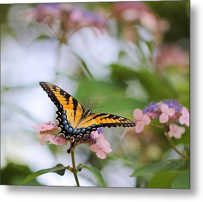 Woodland Butterfly Metal Print by Katherine White