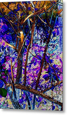 Woodland Metal Print by Carol Lynch
