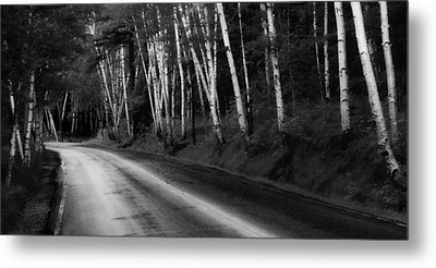 Woodland Drive Metal Print by Wendell Thompson