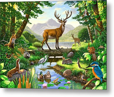 Woodland Harmony Metal Print by Chris Heitt