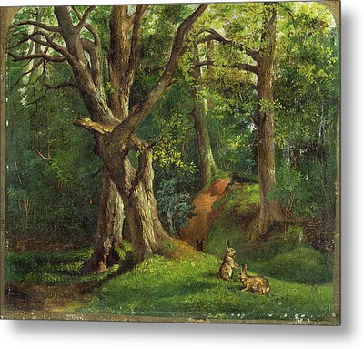 Woodland Scene With Rabbits Possibly Signed Metal Print by Litz Collection