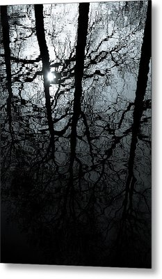 Woodland Waters Metal Print by Dave Bowman