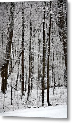 Woods On A Snowy Night Metal Print by Penny Hunt